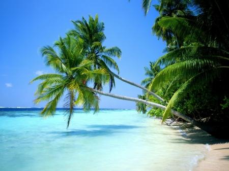 Playa_paradisiaca